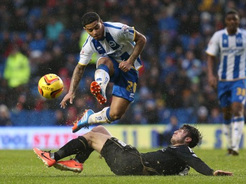 Sunderland boss Gus Poyet raids his old club Brighton for Liam Bridcutt – and Will Buckley may follow