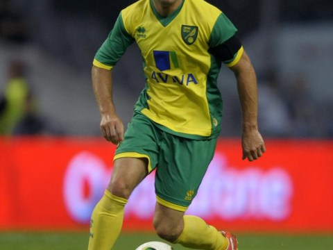 Norwich's Wes Hoolahan slaps in transfer request as he looks to join old boss Paul Lambert at Aston Villa