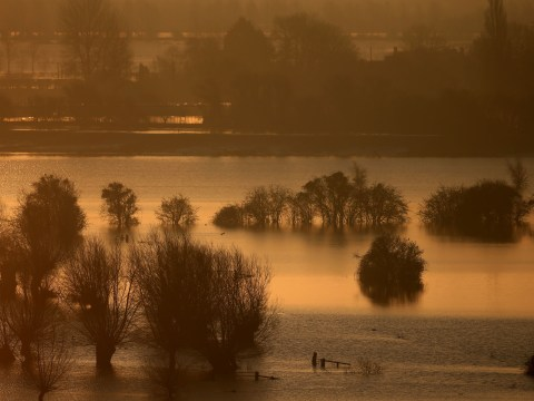 Thousands more 'face floods risk in Britain': Climate warning in new global report