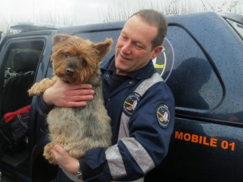 Woman and her dog Elvis rescued after being trapped by floods for 13 days