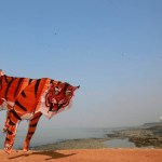 A participant runs with a large tiger-shaped kite as he prepares to fly it at the International Kite Festival in Mumbai, India, Wednesday, Jan. 8, 2014. Kite-flyers from different countries participated in the day-long festival. (AP Photo/Rafiq Maqbool)