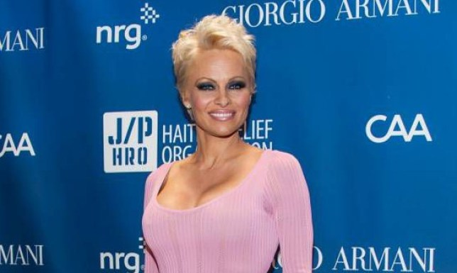 LOS ANGELES, CA - JANUARY 11: Pamela Anderson arrives at the 3nd Annual Sean Penn & Friends HELP HAITI HOME Gala Benefiting J/P HRO Presented By Giorgio Armani at Montage Hotel on January 11, 2014 in Los Angeles, California. (Photo by Valerie Macon/Getty Images)
