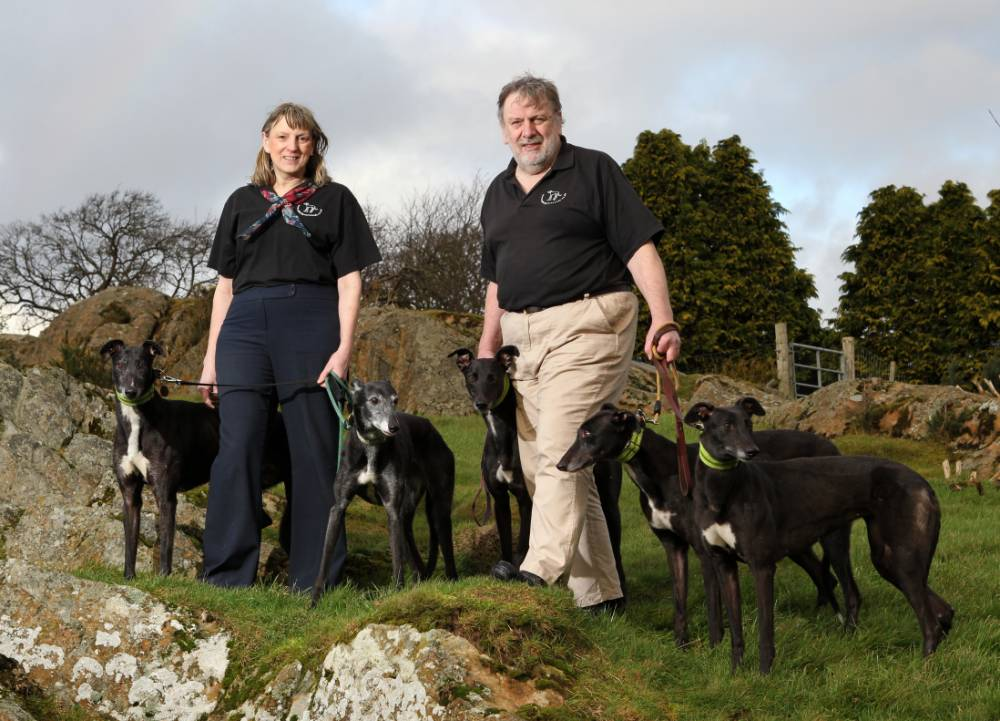 Greyhound fathers 10,000 dogs, kennels rehome greyhound dogs, champion racer greyhound, Top Honcho, animal rescue centres, Irish super-stud Greyhound, Samuel Zelmer-Jackson, Retired Greyhound Trust, Jenny and Stuart Stott, Witherslack, Cumbria