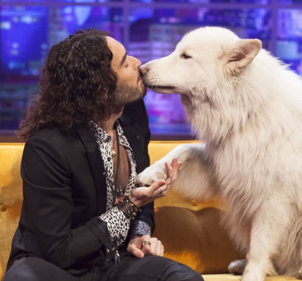 Russell Brand gets soppy over Jemima Khan's dog Brian on The Jonathan Ross Show