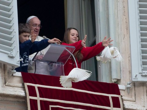 Vatican peace doves attacked by crow and seagull seconds after being released
