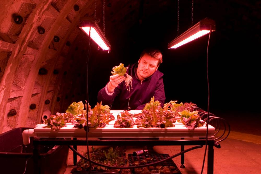 The tunnels under the streets of London where  Richard Ballard (pictured) and Steven Dring are setting up a farm. See SWNS story SWFARM; Two entrepreneurs, Richard Ballard and Steven Dring, have teamed up with Michelin-starred chef Michel Roux Jr to create a working farm in an extensive tunnel network beneath Londonís Northern Line. The subterranean farm, which will start trading later this year, will produce a range of micro-herbs, shoots, miniature vegetables and other delicacies that will be sold to restaurants, supermarkets and wholesalers.  The tunnels will provide 2.5 acres of growing space. The tunnels sit beneath the Northern Line near Clapham North tube station. A crowdfunding campaign starts today, giving investors of all sizes the chance to buy a stake in the project from as little as £10.  First deliveries of produce to customers are expected to begin in the late summer. Specially- designed structures to house the three-layer growing platforms are currently being constructed in Yorkshire.   Growing trials have been conducted over the last 18 months in the tunnels and are still underway. The farm will be carbon neutral.  Special low energy LED bulbs and an integrated hydroponics system are used.  One hundred feet of earth above the tunnels keep temperatures steady at around 16 degrees centigrade all year round and energy consumption at a minimum.  Any energy needs will be extracted from green suppliers and the proximity of the tunnels to New Covent Garden market and Londonís many restaurants will keep food miles to a minimum.