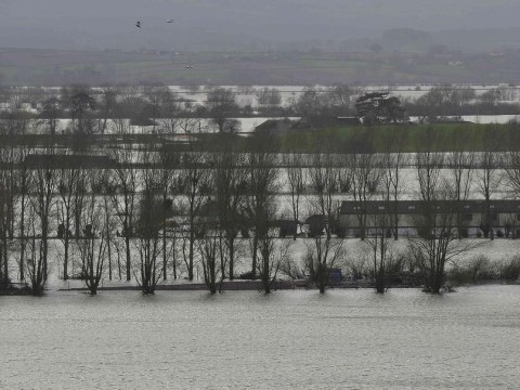 Ministers aren't fixing the flooding problem – they're making it worse