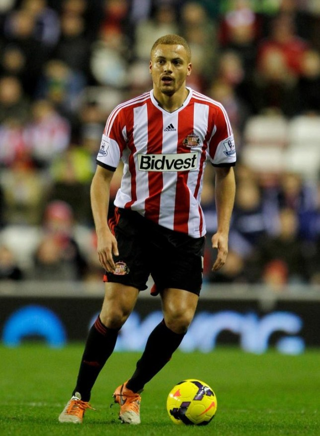 SUNDERLAND, ENGLAND - JANUARY 29: Sunderland's Wes Brown during the Barclays Premier League match between Sunderland and Stoke City at Stadium of Light on January 29, 2014 in Sunderland, England. Richard Sellers/Getty Images