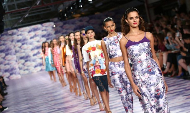 The House Of Holland show at London Fashion Week in September 2013 (Picture: Tim P. Whitby/Getty)