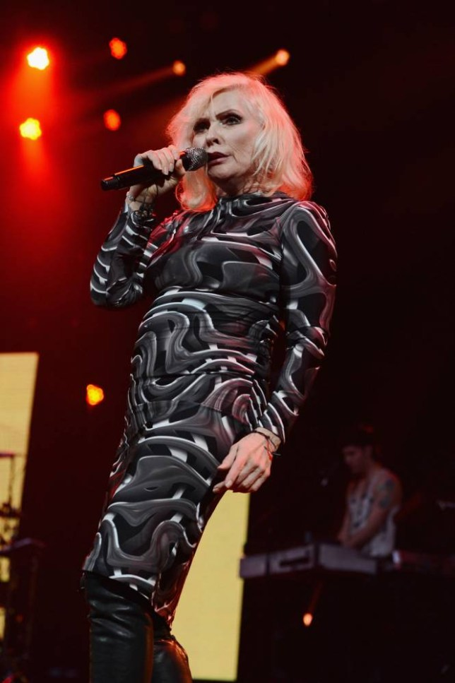 Debbie Harry of Blondie at an Amnesty International Concert in New York, February 2014  (Picture: Theo Wargo/Getty)