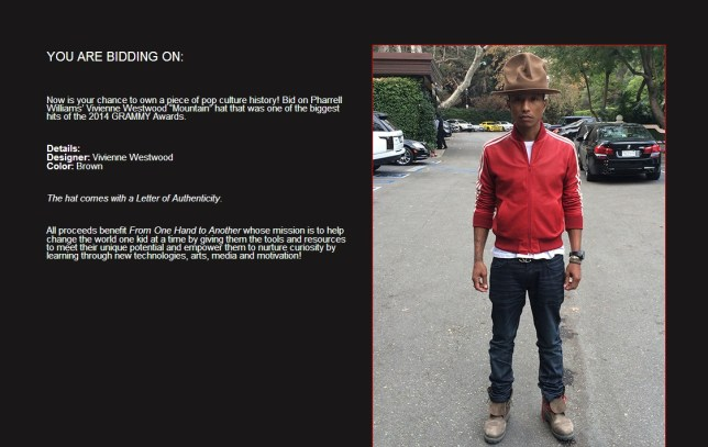 61ee4c4d2 Pharrell Williams' 'mountain' hat up for auction on eBay | Metro News