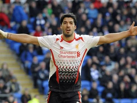 Gus Poyet: I hope Luis Suarez gets ill before Sunderland face Liverpool