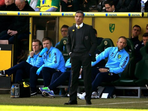 Chris Hughton In/Out debate refuses to subside as Norwich City fans accused of setting sights too high