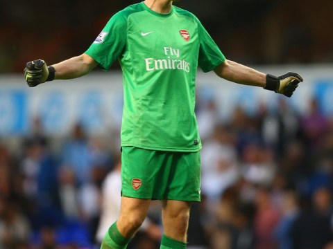 Wojciech Szczesny: I'd sign with Arsenal for the rest of my career