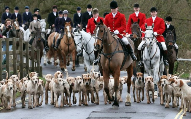 he Prime Minister was pressed in the Commons to quash rumours that the Hunting Act would be amended