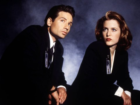 David Duchovny opens up about X-Files revival, saying: 'It looks very good'