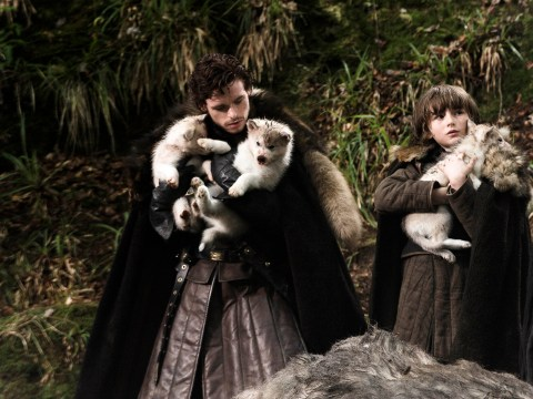 Game Of Thrones season four cheat sheet: Everything you need to know about the Starks