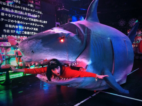 Katy Perry enters the jaws of a giant mechanical shark