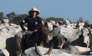 Lucas Leiva has enjoyed a summer break on his cattle ranch