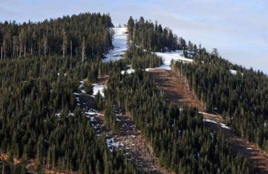A view of the non-Olympic competition side of the Cypress Mountain ski fields