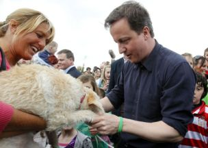 Makes a change from babies: David Cameron greets a dog in Gomersal, West Yorkshire (Picture: Getty)