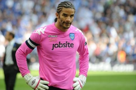 David James has enjoyed a fine season at relegated Portsmouth