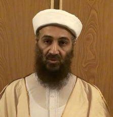 Bin Laden, Taliban