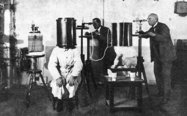 Dr Jan Bondeson, Nazi dogs