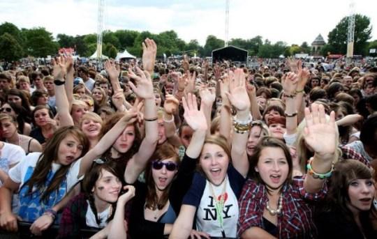 Festival, revellers