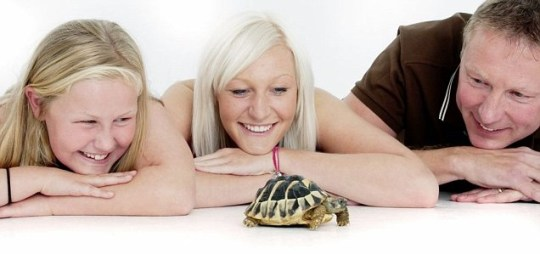 The Conneely family from Maulden, Bedfordshire, with their pet tortoise Harry