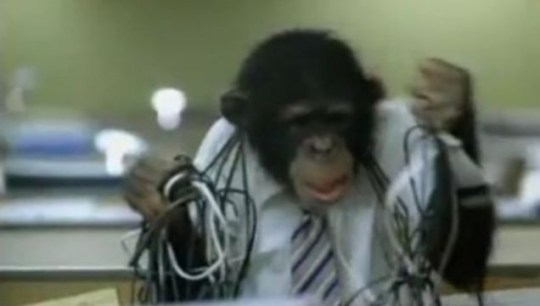 careerbuilder.com, Super Bowl, advert, chimpanzee