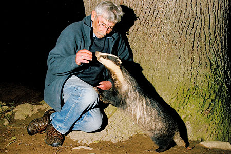 Friends: Gareth Morgan gets up close with one of his badger pals