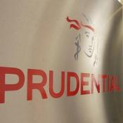 Prudential has carried out a study on defined contribution pensions