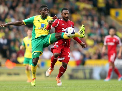 Ten reasons why Norwich City will survive in the Premier League
