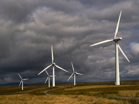Poll: Are you fed up with wind farms?