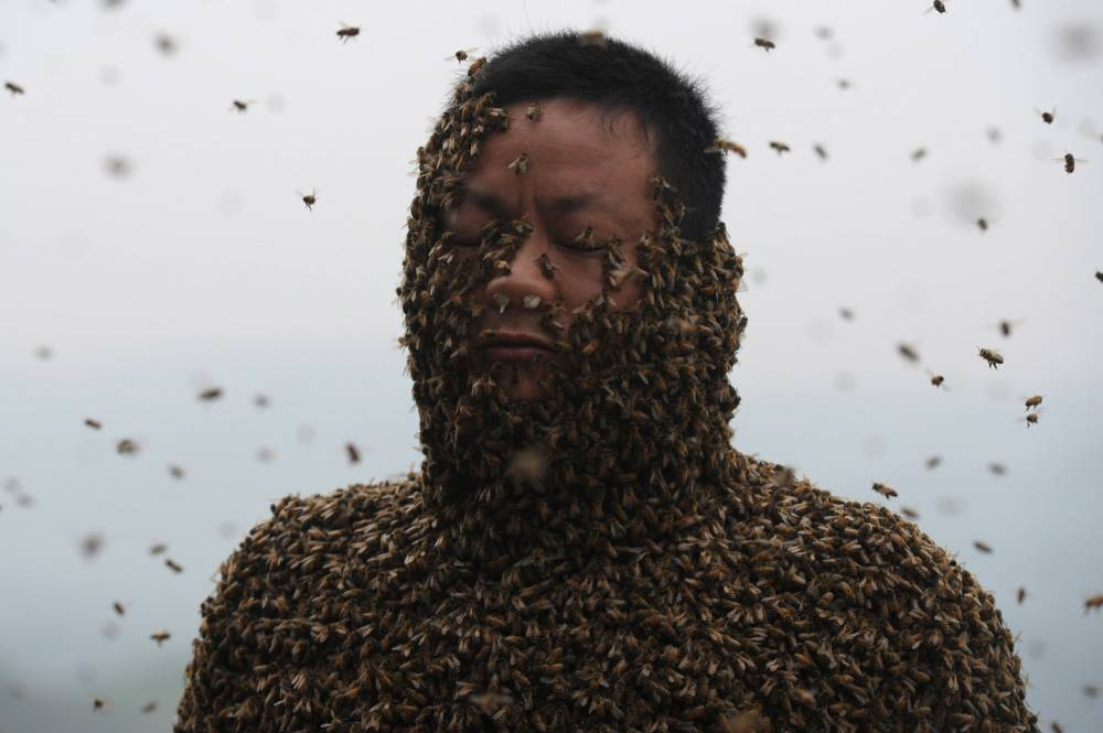 Man takes 40 minutes to put on 45 kg bee suit