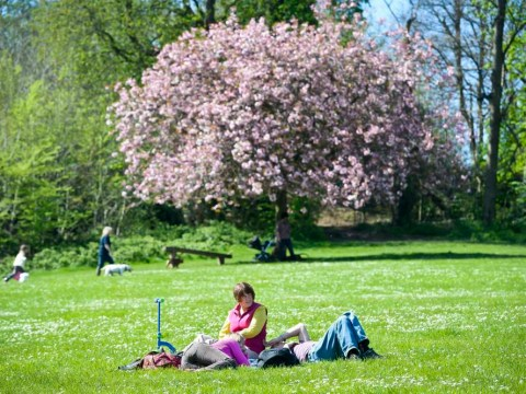 Pictures: Spring sunshine across the UK