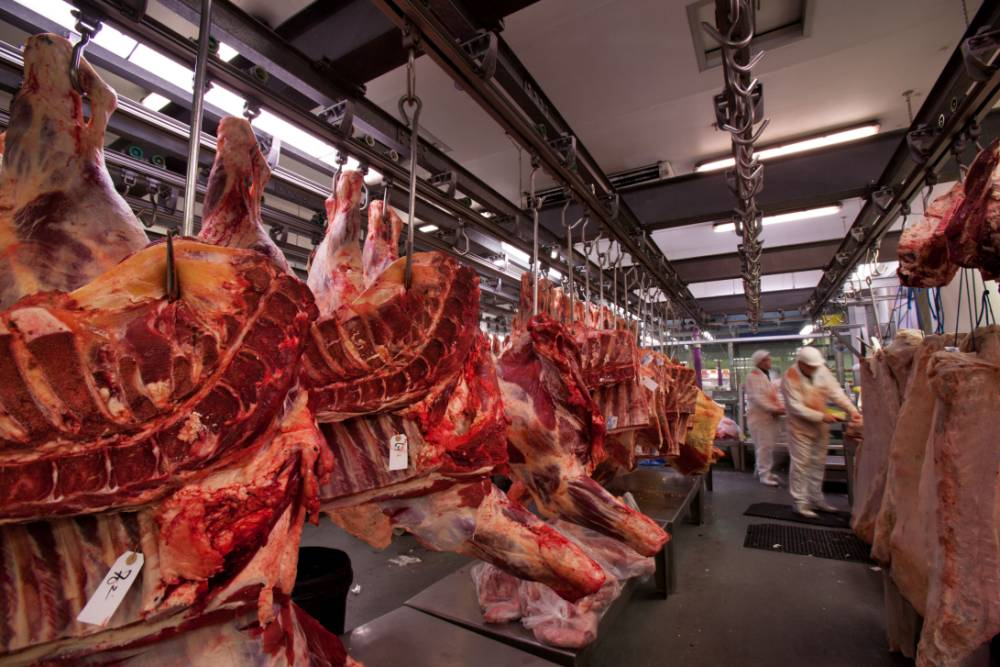 Changing diet:  A quarter of British adults are eating less meat. Inset,  Philip Lymbery,   author of Farmageddon (Picture: Alamy)