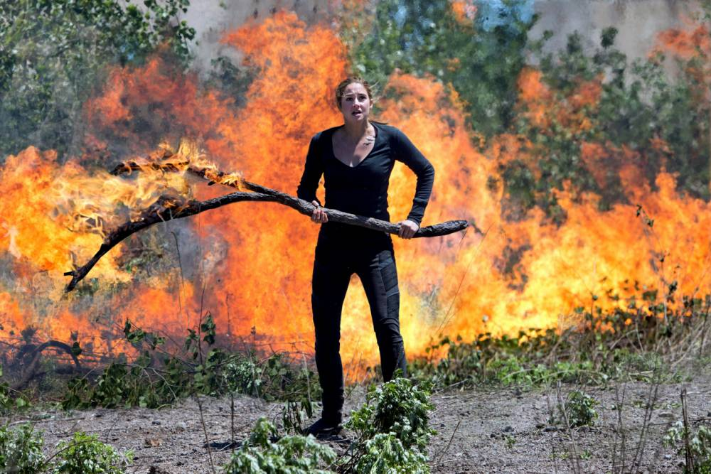 Could Divergent be even better than The Hunger Games?
