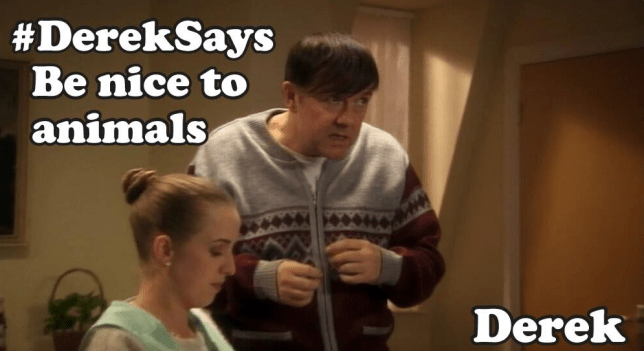 Derek (Picture: Channel4/Twitter)