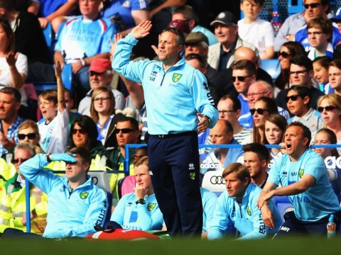 Malky Mackay, Tim Sherwood, Neil Adams and Neil Lennon – who will be the next Norwich City manager?