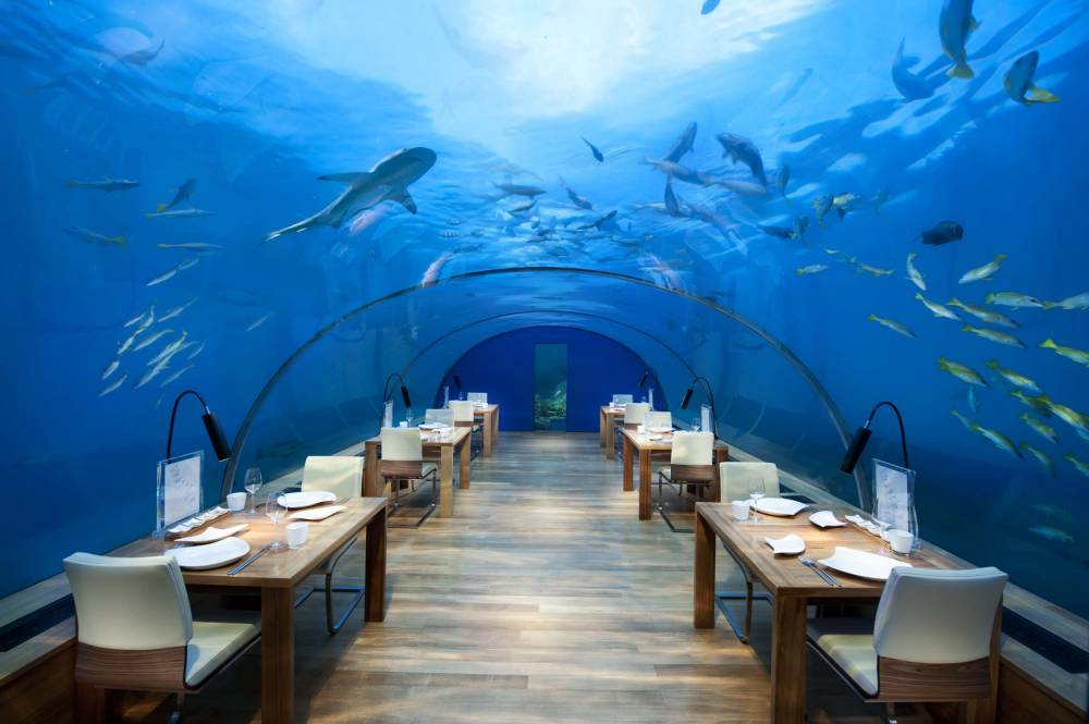 The underwater restaurant that lets you dine 10ft below the Indian Ocean without getting wet
