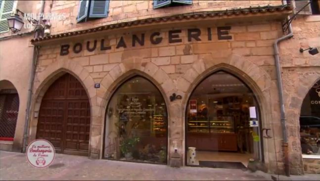 Cat runs into glass door during French TV show