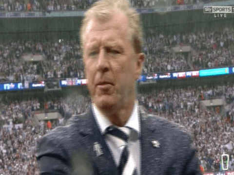 No brolly this time? Steve McClaren gets absolutely soaked on Wembley return