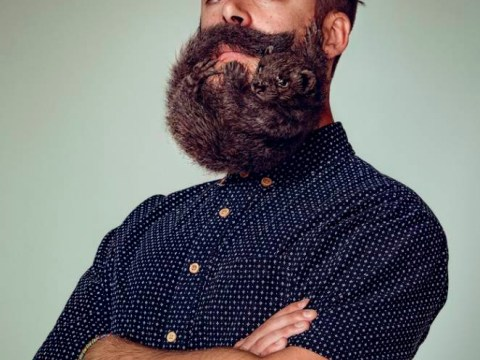 These amazing hipster beards actually have animals shaped into them
