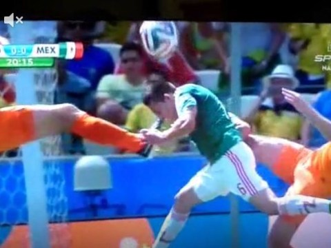 Should Mexico have been awarded a penalty for Ron Vlaar's boot to Hector Herrera's face in the box?