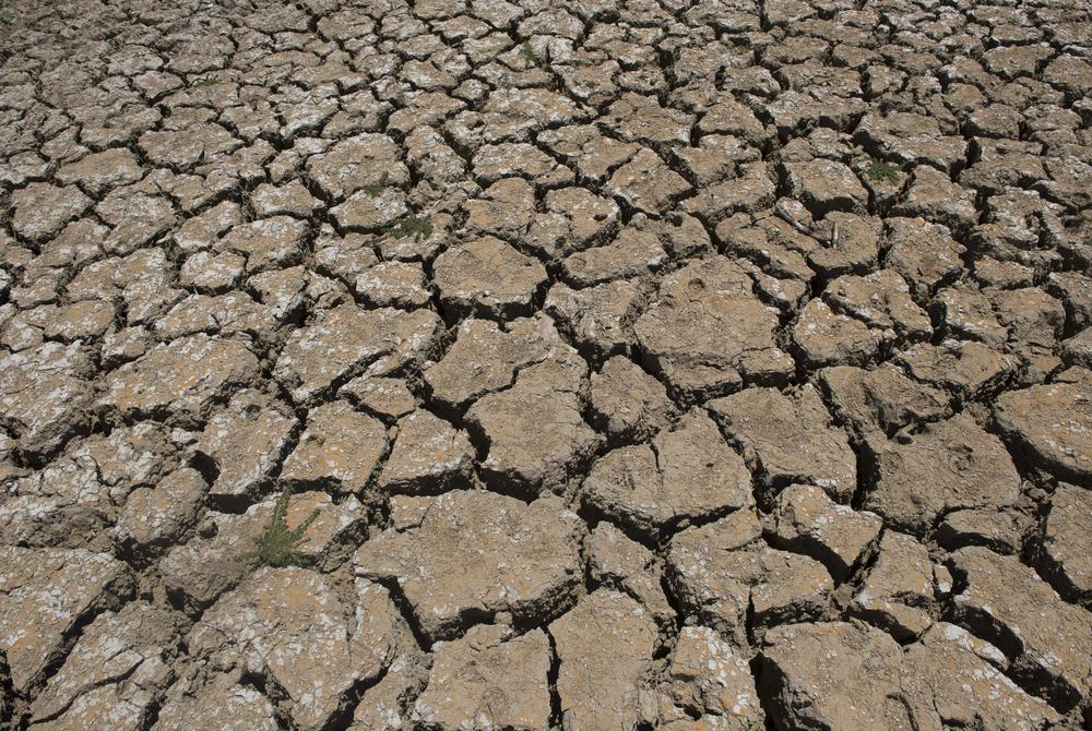 Africa sitting on 'huge amount' of water, scientists say