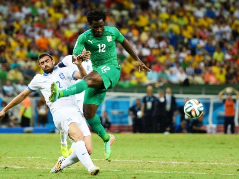 Tottenham 'to rival Liverpool for Wilfried Bony' with £18m bid