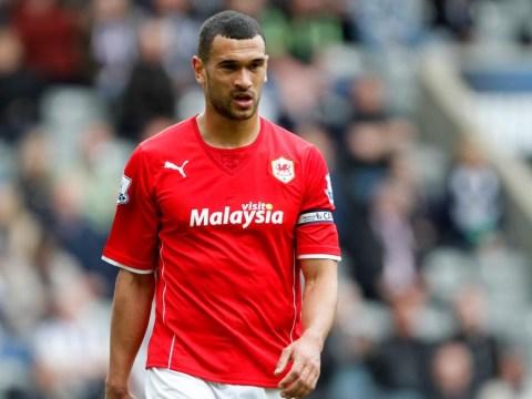 Should Southampton sign Steven Caulker or Ron Vlaar to replace Liverpool-bound Dejan Lovren?