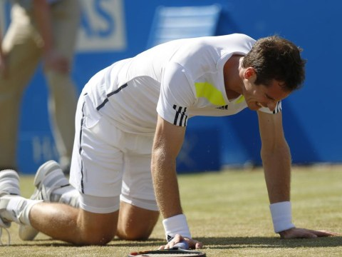 Has the British public been too quick to write off Andy Murray?